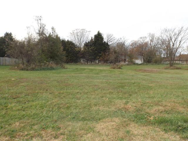 Lot 3 N Vermillion Drive, Strafford, MO 65757 (MLS #60126091) :: Sue Carter Real Estate Group