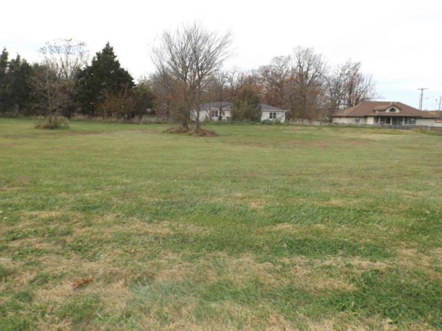 Lot 2 N Vermillion Drive, Strafford, MO 65757 (MLS #60126096) :: Sue Carter Real Estate Group
