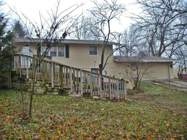 6454 N Farm Road 91, Willard, MO 65781 (MLS #60126331) :: Team Real Estate - Springfield
