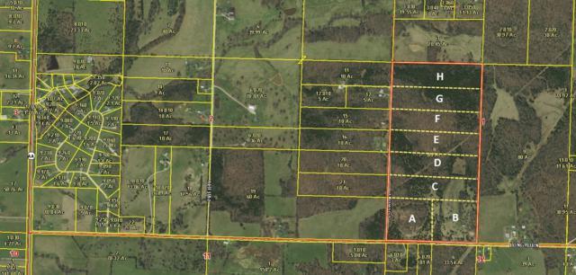 Lot C Lookout Trail, Fair Grove, MO 65648 (MLS #60126494) :: Team Real Estate - Springfield