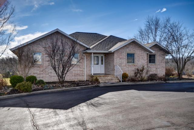 14112 Lawrence 1137, Mt Vernon, MO 65712 (MLS #60126573) :: Team Real Estate - Springfield
