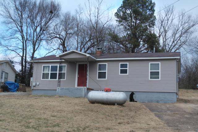 505 Old Cane Bluff Road, Alton, MO 65606 (MLS #60126654) :: Team Real Estate - Springfield