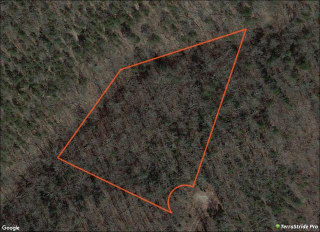 Lot 13 Savage Rd, Kirbyville, MO 65679 (MLS #60126745) :: Team Real Estate - Springfield