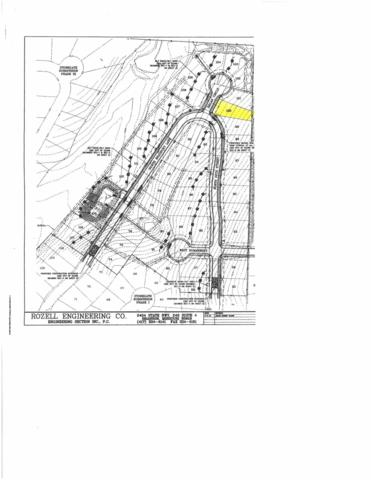 Lot 101 Bradbury Stone Gate, Ozark, MO 65721 (MLS #60126993) :: Weichert, REALTORS - Good Life