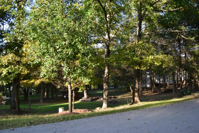 Lot 49 Wildflower Road, Kimberling City, MO 65686 (MLS #60127153) :: Team Real Estate - Springfield