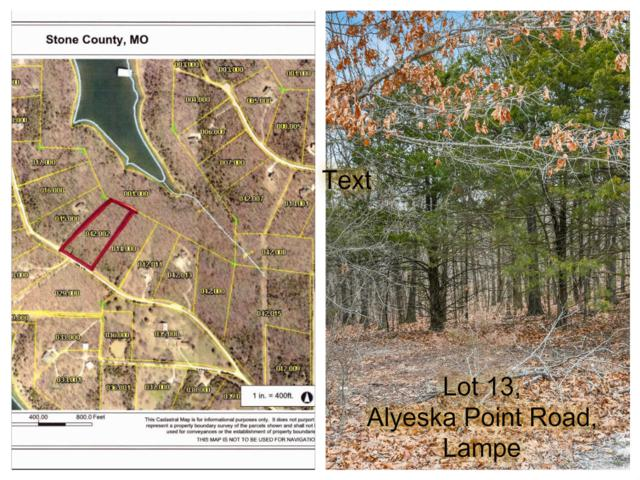 Tbd Lot 13 Alyeska Point Road, Lampe, MO 65681 (MLS #60127274) :: Team Real Estate - Springfield