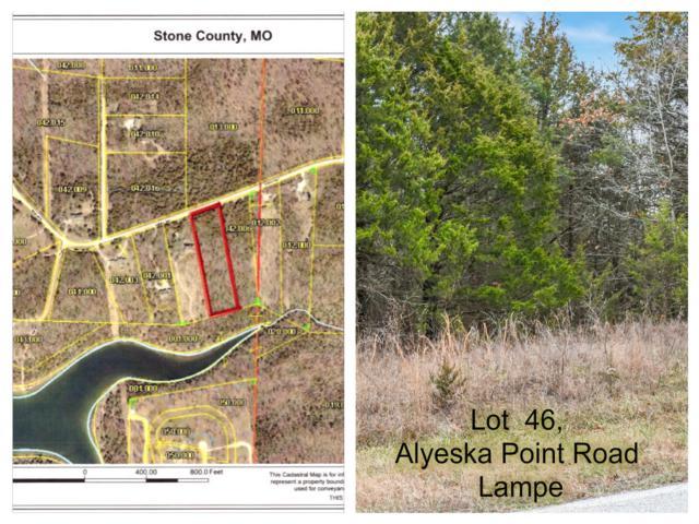 Tbd Lot 46 Alyeska Point Road, Lampe, MO 65681 (MLS #60127276) :: Massengale Group