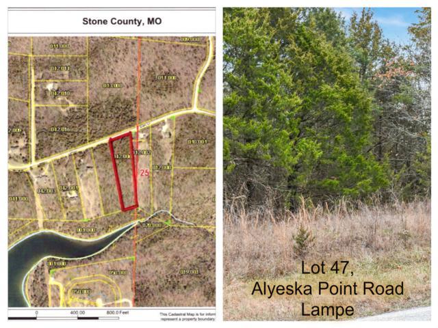 Tbd Lot 47 Alyeska Point Road, Lampe, MO 65681 (MLS #60127277) :: Sue Carter Real Estate Group