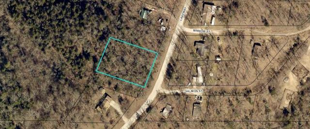Lot 15 Lakeway Village, Kissee Mills, MO 65680 (MLS #60127337) :: Massengale Group