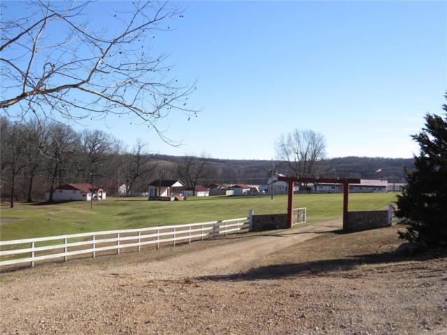 10638 Ottawa Drive, Conway, MO 65632 (MLS #60127395) :: Team Real Estate - Springfield