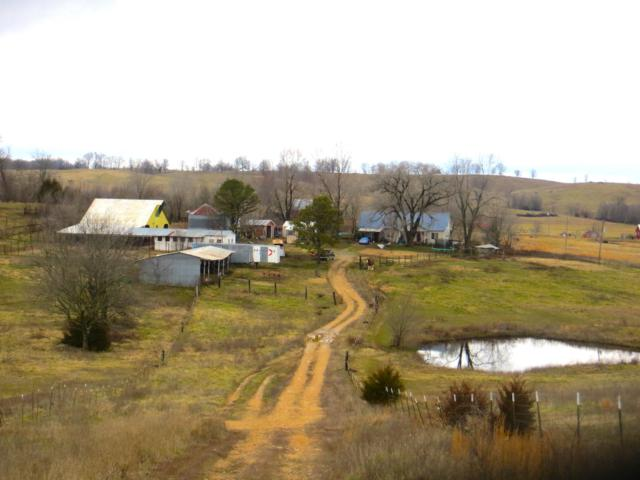 19562 County Road 232, Couch, MO 65690 (MLS #60127704) :: Team Real Estate - Springfield