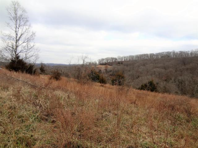 280 Jacks Hollow Road, Walnut Shade, MO 65771 (MLS #60127933) :: Team Real Estate - Springfield