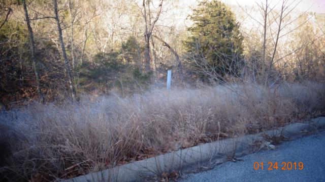 Lot 192 Syler Cir, Hollister, MO 65672 (MLS #60127947) :: Team Real Estate - Springfield