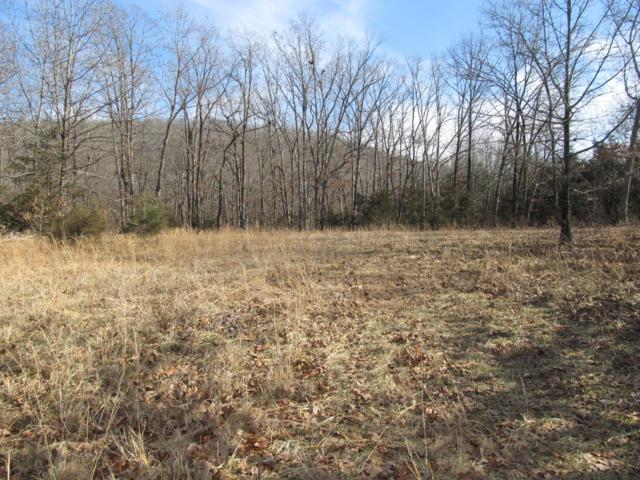 00 W Hwy 60, Mansfield, MO 65704 (MLS #60128022) :: Team Real Estate - Springfield