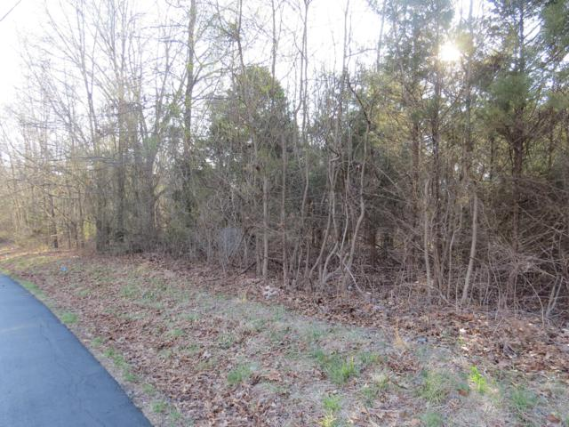 Lot 6 Stoneshire Drive, Highlandville, MO 65669 (MLS #60128060) :: Sue Carter Real Estate Group