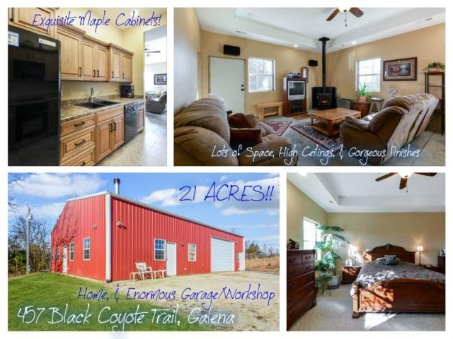 457 Black Coyote Trail, Galena, MO 65656 (MLS #60128114) :: Team Real Estate - Springfield