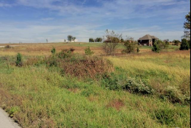 0 Ridge Park Lot 8, Ozark, MO 65721 (MLS #60128149) :: Weichert, REALTORS - Good Life