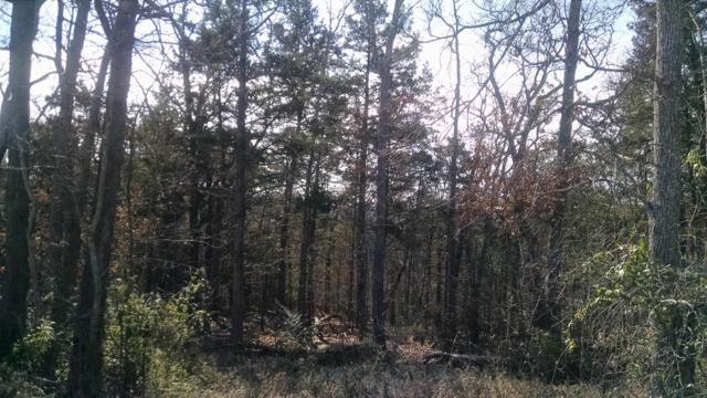 Tbd State Hwy 176, Forsyth, MO 65653 (MLS #60128348) :: Sue Carter Real Estate Group