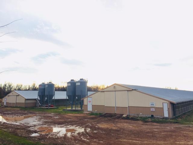 8505b Farm Road 2140, Cassville, MO 65625 (MLS #60128376) :: Team Real Estate - Springfield