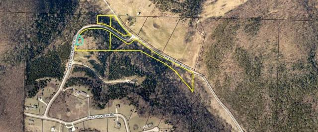 Lot 4 Hilltop Ranches Road, Reeds Spring, MO 65737 (MLS #60128554) :: Sue Carter Real Estate Group