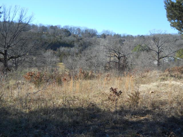 Lot 7 Everest Road, Galena, MO 65656 (MLS #60128664) :: Team Real Estate - Springfield
