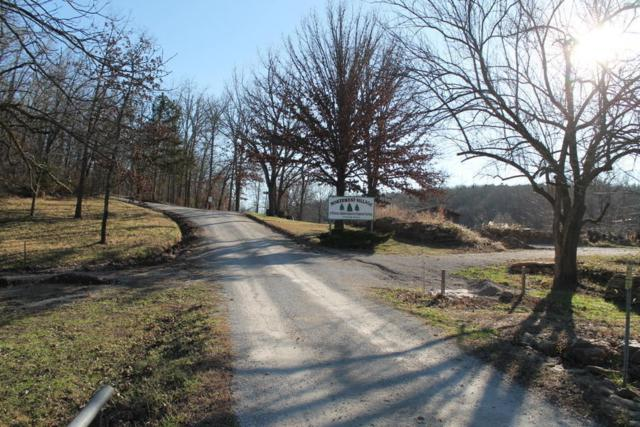000 Dow Lane, Mountain Grove, MO 65711 (MLS #60128867) :: Team Real Estate - Springfield