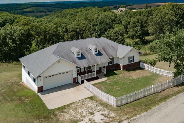 162 Stone County Road, Galena, MO 65656 (MLS #60128975) :: Team Real Estate - Springfield