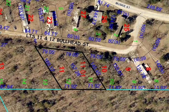 11 & 12 Bullhead Street, Kissee Mills, MO 65680 (MLS #60128984) :: Weichert, REALTORS - Good Life