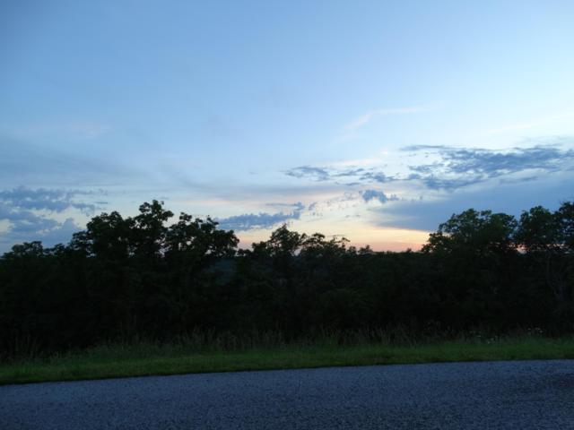 317 Sunset Drive, Saddlebrooke, MO 65630 (MLS #60129035) :: Weichert, REALTORS - Good Life