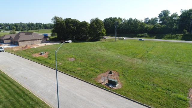 Lot 35 Gregory Drive, Nixa, MO 65714 (MLS #60129128) :: Sue Carter Real Estate Group