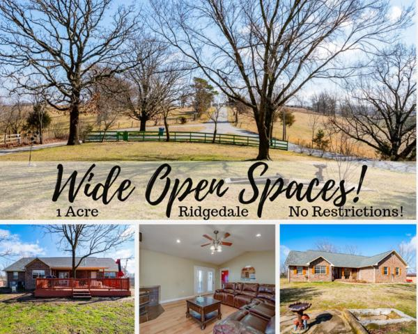 1100 Brunswick Road, Ridgedale, MO 65739 (MLS #60129444) :: Winans - Lee Team | Keller Williams Tri-Lakes
