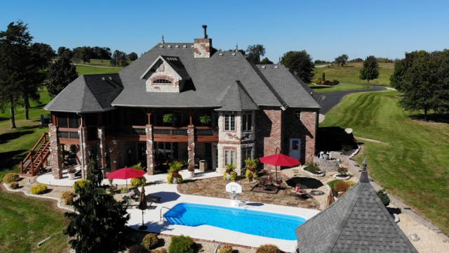8740 N Farm Road 231, Strafford, MO 65757 (MLS #60129468) :: Team Real Estate - Springfield