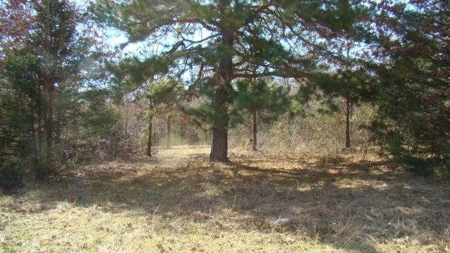 Tbd County Road 8530, West Plains, MO 65775 (MLS #60129476) :: Sue Carter Real Estate Group