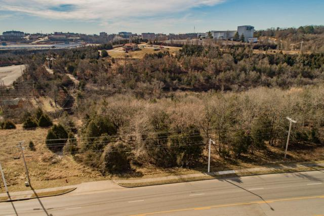2415 Shepherd Of The Hills Expressway, Branson, MO 65616 (MLS #60129560) :: Massengale Group