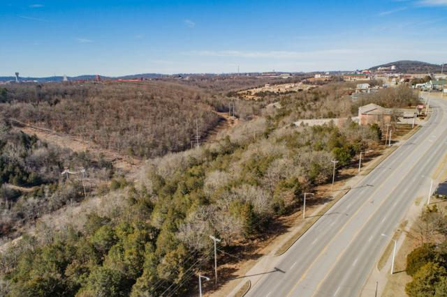 2315, 2345 Shepherd Of The Hills Expressway, Branson, MO 65615 (MLS #60129562) :: Massengale Group
