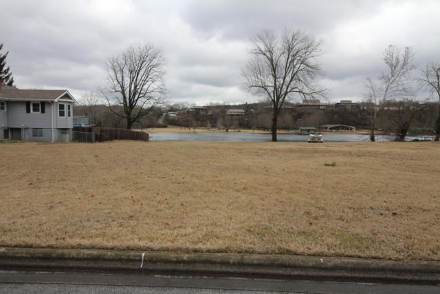 Lot 12 Parnell Drive, Branson, MO 65616 (MLS #60129763) :: Weichert, REALTORS - Good Life
