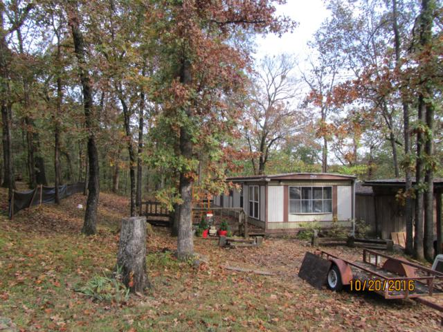 1010 Valley Road, Merriam Woods, MO 65740 (MLS #60129835) :: Massengale Group