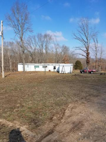 8295 State Highway Aa, Crane, MO 65633 (MLS #60129875) :: Team Real Estate - Springfield