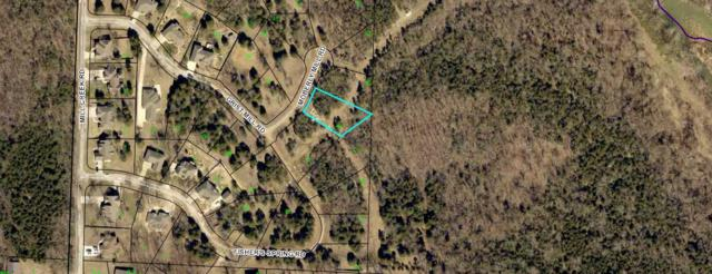 136 Lot 49 Moberly Mill Road, Branson, MO 65616 (MLS #60129910) :: Team Real Estate - Springfield