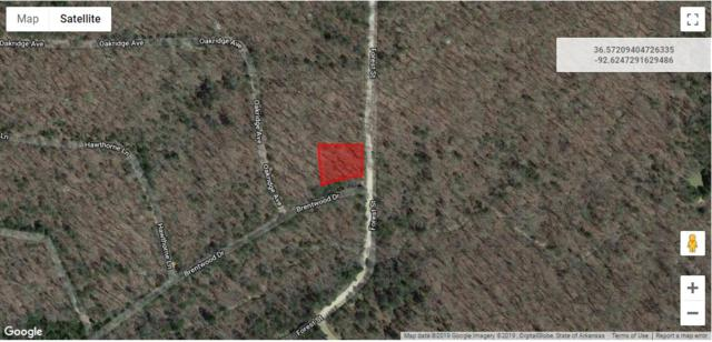 Lot 67 Rolling Hills Subdivision, Theodosia, MO 65761 (MLS #60129971) :: Weichert, REALTORS - Good Life