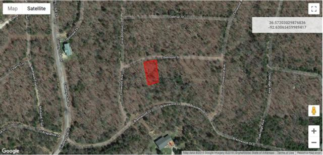 Lot 3 Rolling Hills Subdivision, Theodosia, MO 65761 (MLS #60129974) :: Weichert, REALTORS - Good Life