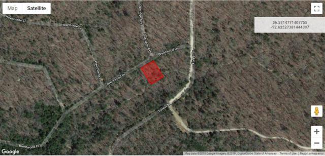 Lot 32 Rolling Hills Subdivision, Theodosia, MO 65761 (MLS #60129976) :: Weichert, REALTORS - Good Life