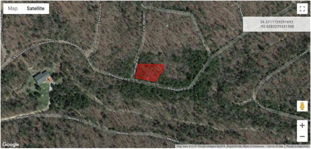 Lot 10 Rolling Hills Subdivision, Theodosia, MO 65761 (MLS #60129978) :: Weichert, REALTORS - Good Life