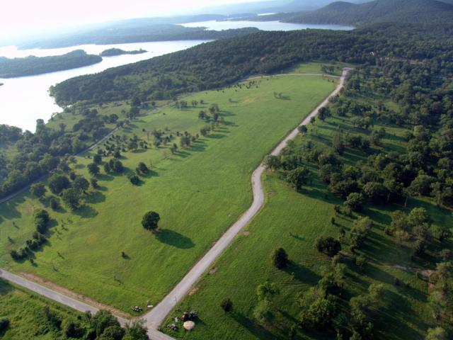 Lot 30 Lago Vista Drive, Shell Knob, MO 65747 (MLS #60130335) :: Sue Carter Real Estate Group