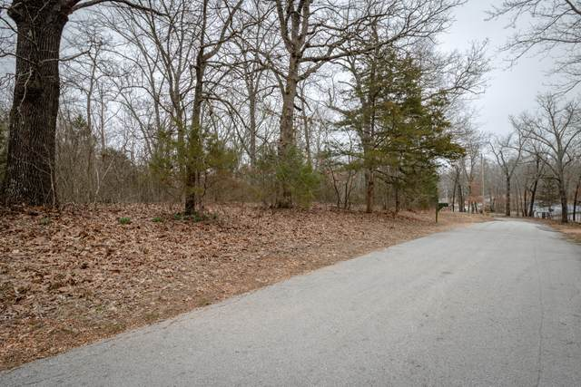 0 Hill Dr Lots 4-9, Galena, MO 65656 (MLS #60130364) :: Sue Carter Real Estate Group