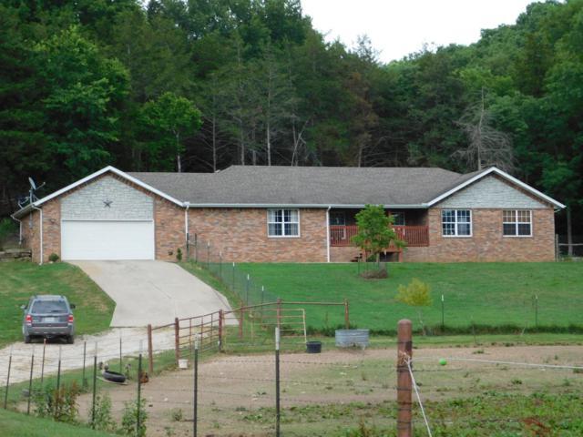 97 Medicine Bow Lane, Crane, MO 65633 (MLS #60130616) :: Team Real Estate - Springfield