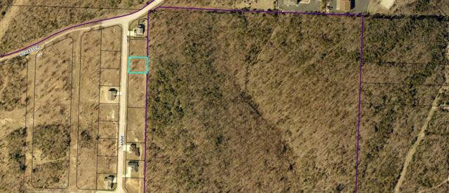 Lot 3 Anne Lane, Branson, MO 65616 (MLS #60130775) :: Sue Carter Real Estate Group