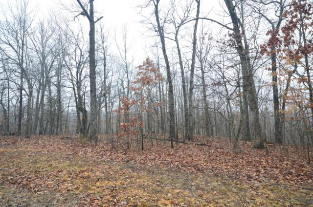 Lot 48 Forest Ridge Road, Rogersville, MO 65742 (MLS #60131034) :: Team Real Estate - Springfield