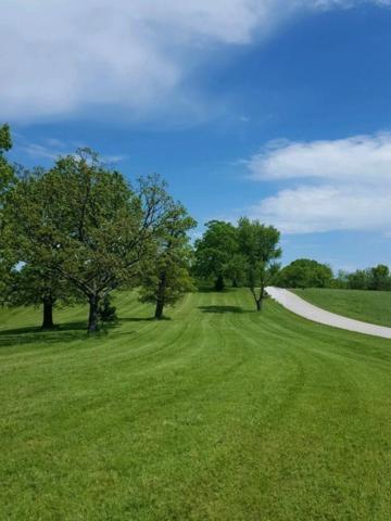 Lot 1 State Highway 176, Chestnutridge, MO 65630 (MLS #60131038) :: Team Real Estate - Springfield