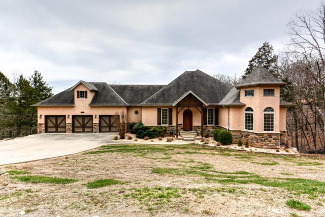 242 Peaceful Drive, Branson, MO 65616 (MLS #60131126) :: Team Real Estate - Springfield